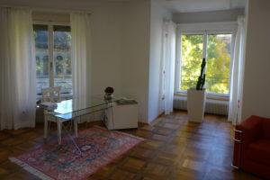 Familienstellen Einzelsitzung, Luzern